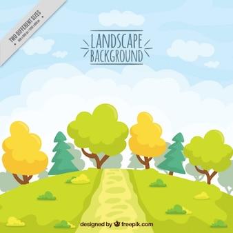 Campagna con alberi e un percorso