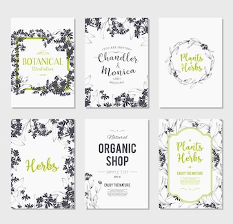 Collezione dei flyer dei negozi botanici
