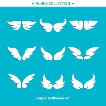 Collezione di ali decorative in design piatto