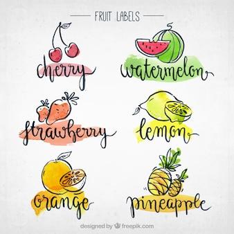 Collezione di etichette di frutta