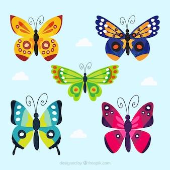 Collezione di farfalle in design piatto