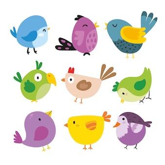 Collezione di illustrazioni di uccelli