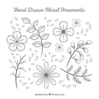 Confezione di fiori disegnati a mano e foglie