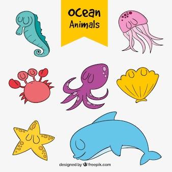 Confezione di mano animali marini disegnato