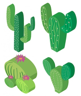 Disegno 3D per piante di cactus