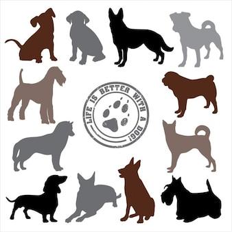 Disegno Cani set