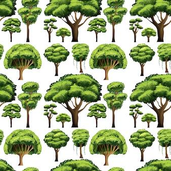Disegno senza soluzione di sfondo con diversi tipi di alberi