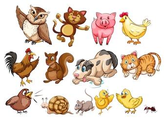 Diversi tipi di animale da fattoria e illustrazione di animali