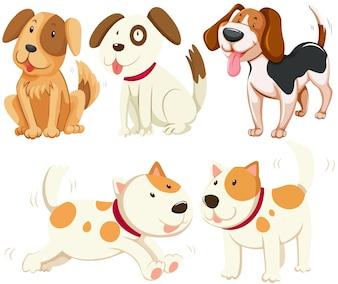 Diversi tipi di illustrazione di cani da cucciolo