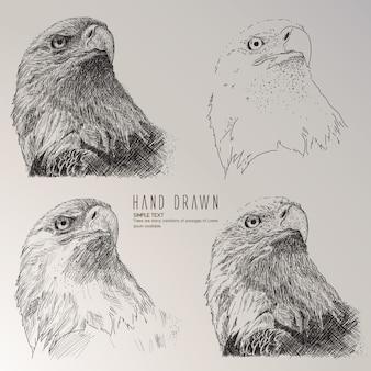 Eagle testa disegnata a mano raccolta