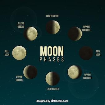 Fasi realistiche della luna