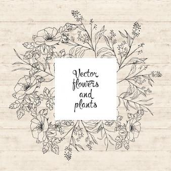 Fiori e piante di progettazione