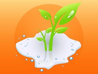 Gocce d 39 acqua sulle foglie scaricare foto gratis for Finestra con gocce d acqua