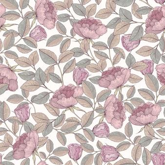 Giardino di rosa disegnato a mano