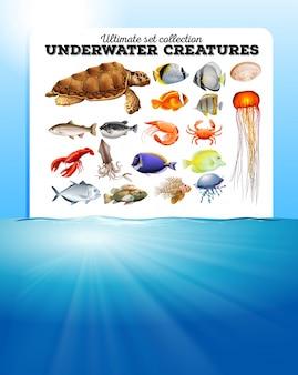Gli animali del mare e l'illustrazione dell'oceano