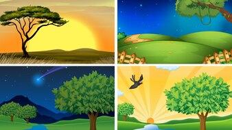Illustrazione di quattro scene di campo e foreste