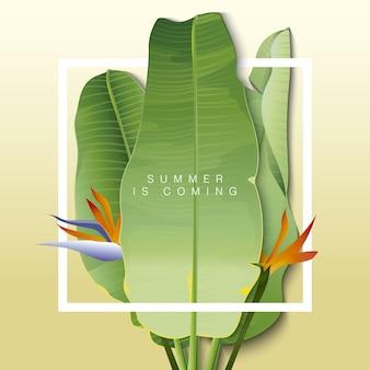 L'estate sta arrivando sfondo con foglie di banana