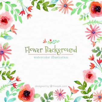 Mano fiore dipinto sfondo