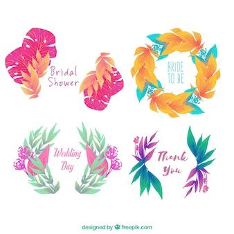 Ornamenti floreali di acquerello impostato per il matrimonio