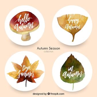 Pacchetto bello di abels di autunno dell'acquerello