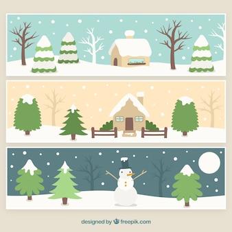 Paesaggio pacchetto nevicato