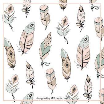 Piume ornamentali sfondo in stile boho