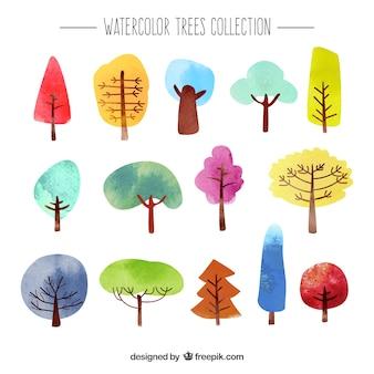 Raccolta di alberi di acquerello