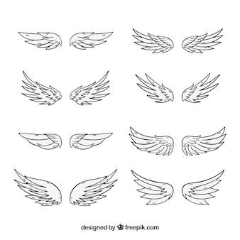 Raccolta di ali disegnate a mano
