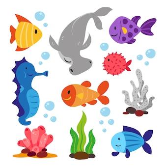 Raccolta di animali di mare