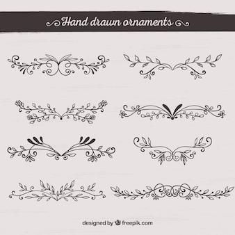 Raccolta di ornamenti disegnati a mano