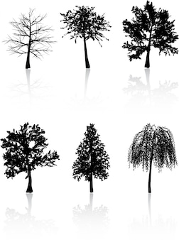 Sagome di albero