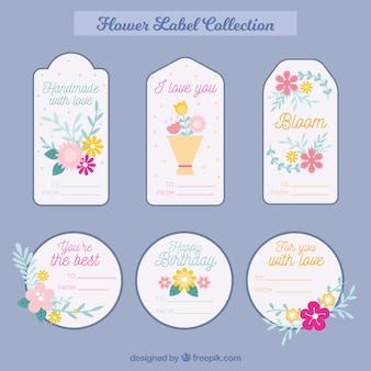 Selezione di bellissime etichette con fiori in design piatto