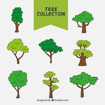 Set di alberi disegnati a mano