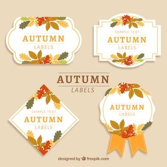 Set di etichette autunnali con foglie colorate