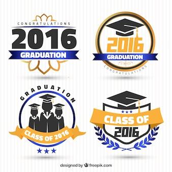 Set di moderni adesivi di laurea
