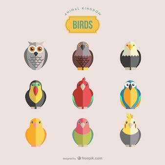 Set di uccelli vettore
