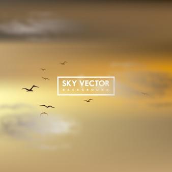 Sfondo con cielo al tramonto e uccelli