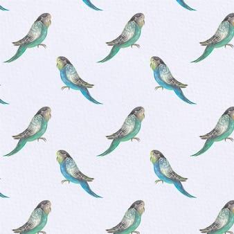 Sfondo di pattern di uccelli