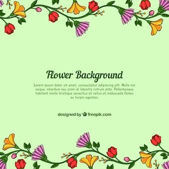 Sfondo floreale verde