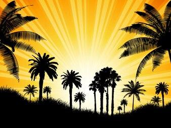 Sfondo tropicale con palme contro un cielo soleggiato