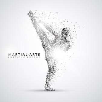 Silhouette di arti marziali