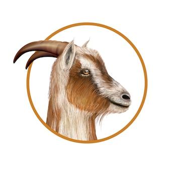 Una capra in un cerchio