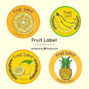 Varietà di etichette di frutta rotonda disegnati a mano