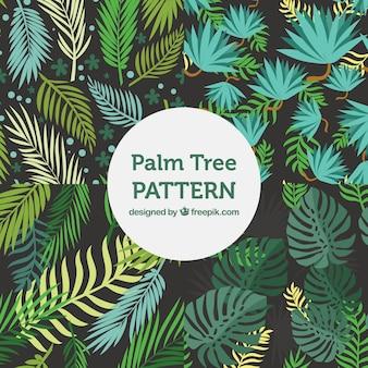 Varietà di modelli piatti con foglie di palma decorativa