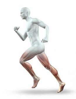3D render van een mannelijke figuur met skelet running