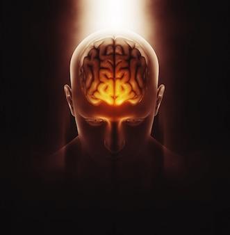 3D render van een medisch beeld van een mannelijke figuur met hersenen gemarkeerd en dramatisch gemarkeerd