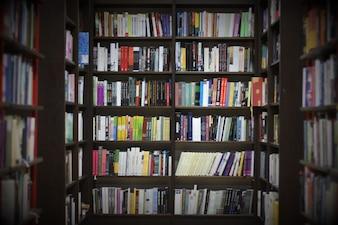 Bibliotheek met boeken