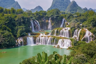 Bomen tropische achtergrond china natuurlijke val