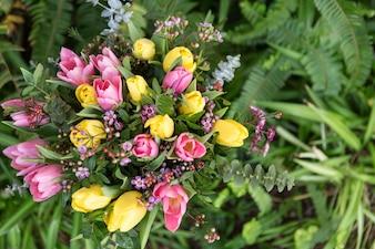 Bovenaanzicht van gekleurde bloemen, omgeven door groene planten