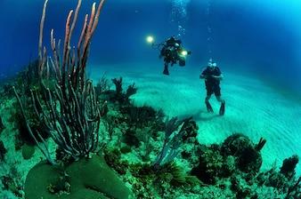 Camera duikers onderwater licht water zee oceaan